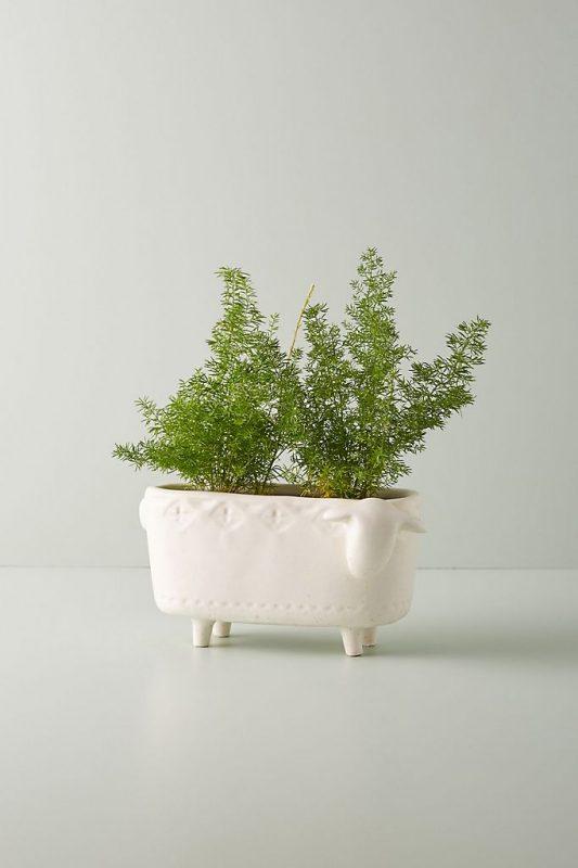 Terracotta Animal Planter Gardening Gift Ideas