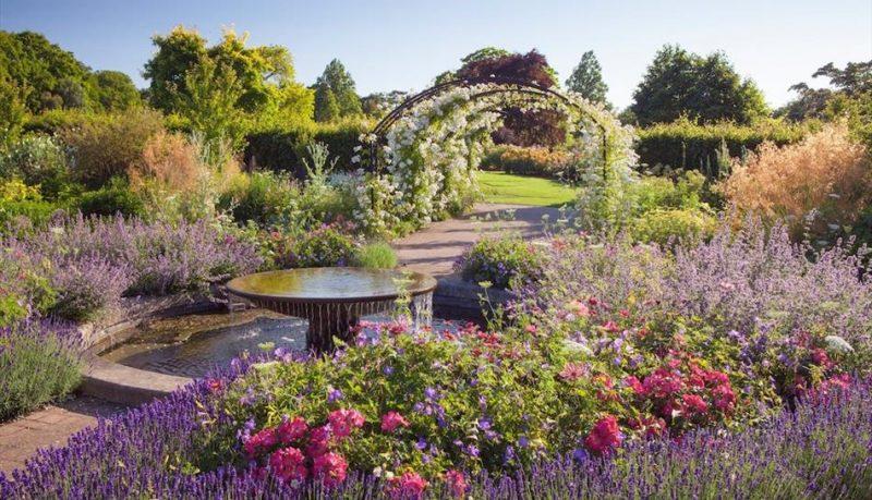 RHS Gardens One Year Membership