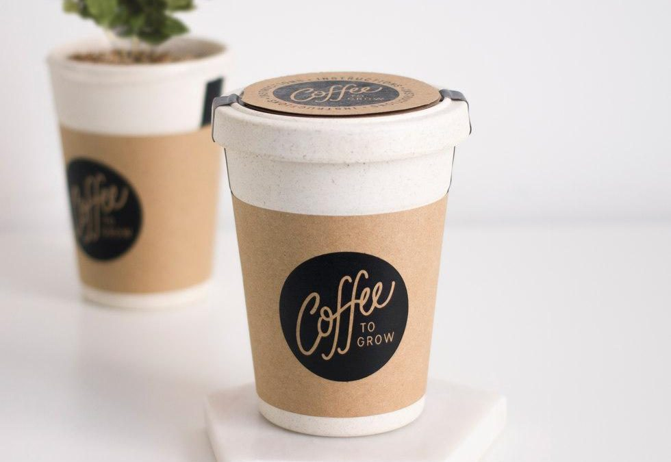 Gifts for coffee lovers grow your own coffee kit