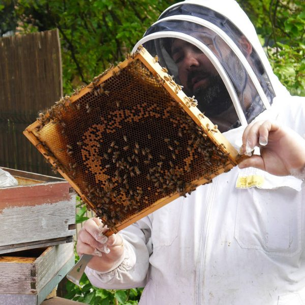 Urban beekeeping and craft beer unique gift experiences