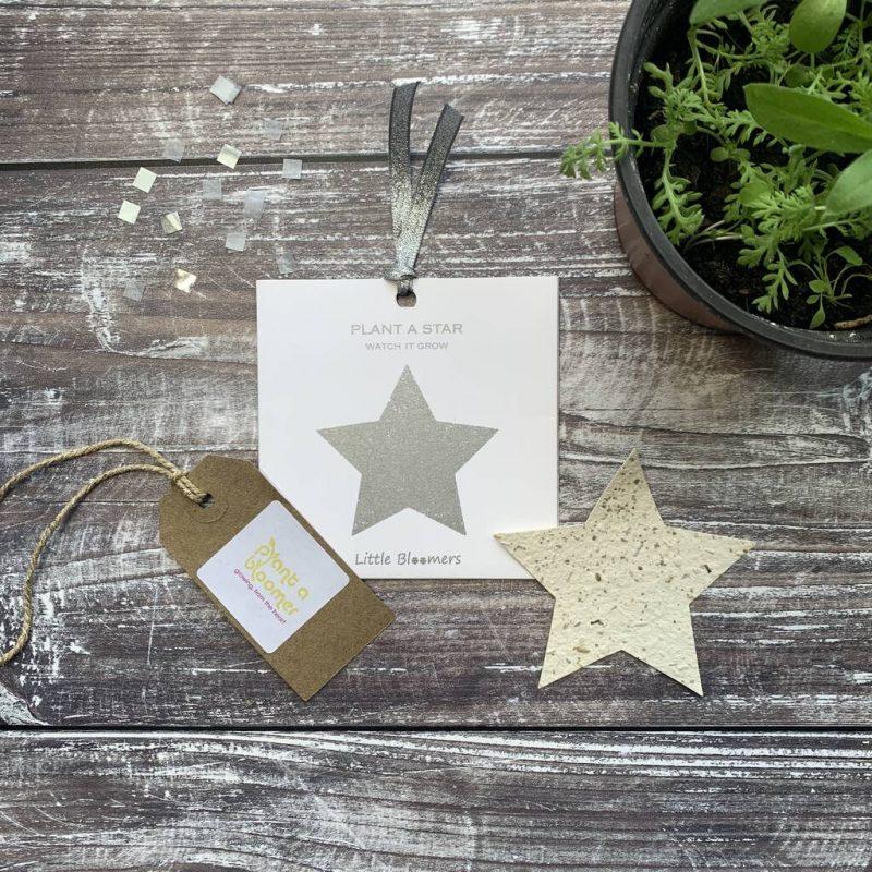 Plantable star paper