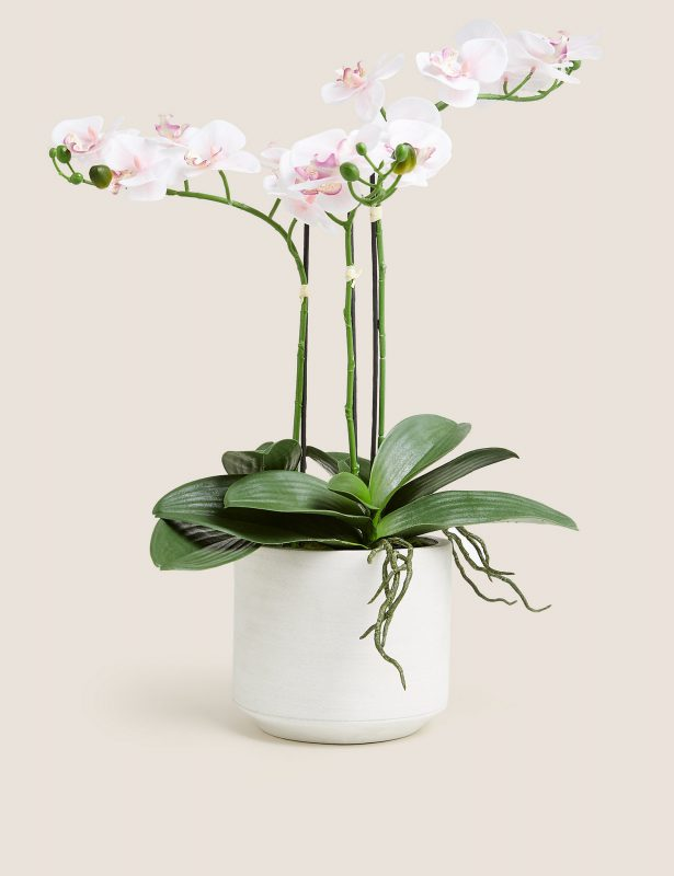 Artificial Large Orchid Plant Gift Ideas