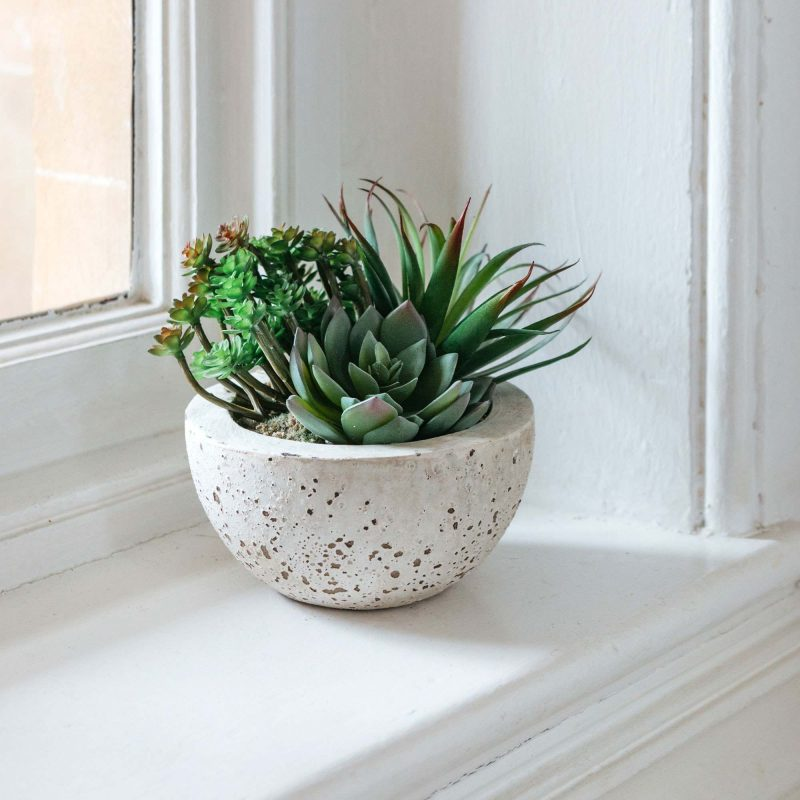 Faux Succulents in a bowl