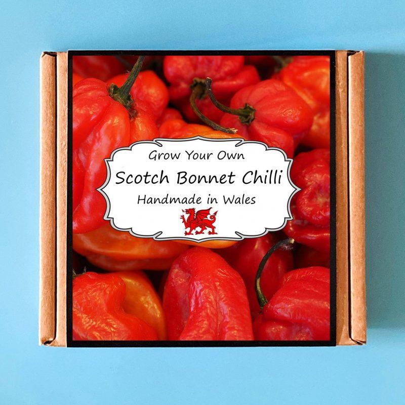Grow Your Own Scotch Bonnet Kit