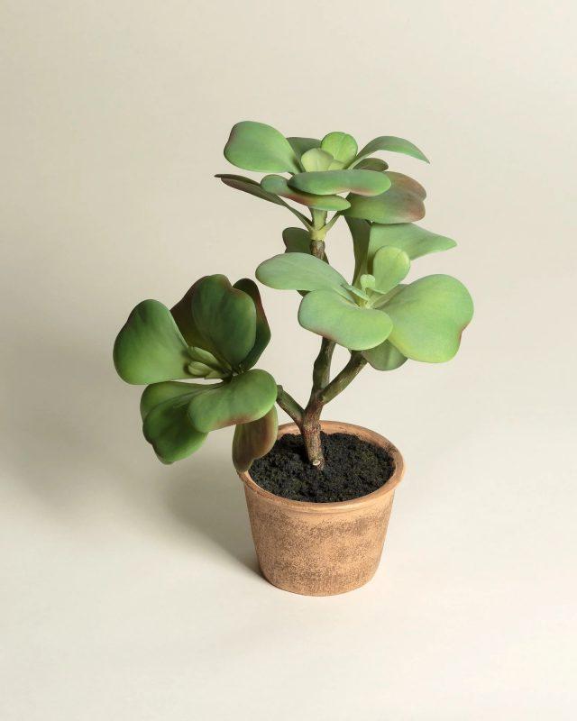 Stemmed Succulent Artificial Plant